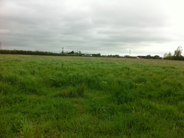 9 Acres of Land, Castlemahon