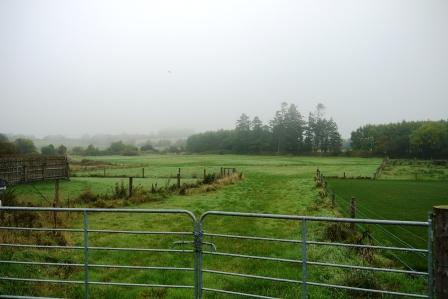 2.5 Acres of Land, Kilcornan